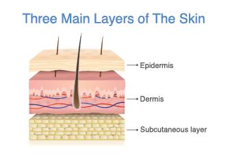 Three Skin Layers